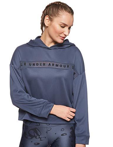 Under Armour Damen Tech Terry Hoody Langarmshirt, Grau, Medium