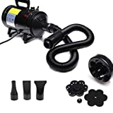ZanGe 2800W Stepless Speed Dog/Cat Pet Grooming Hair Dryer Hairdryer Blaster Blower High Velocity Low Noise Blow Washer Heater Blower with 3 Nozzles and Flexible Hose Black