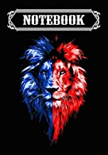 Notebook: Angry Lion Lion King, Journal 6 x 9, 100 Page Blank Lined Paperback Journal/Notebook