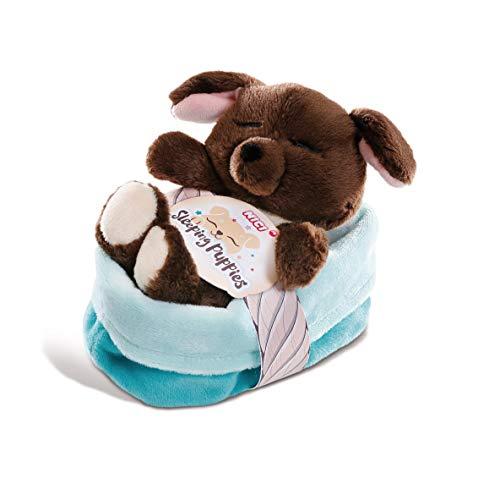 NICI 45372 Kuscheltier Sleeping Puppies Hund 12cm, Flauschiges Plüschtier im blau-grünen Körbchen, süßes Stofftier für Kinder und Kuscheltierliebhaber, braun/türkis