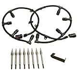6.0 Powerstroke Glow Plug Connector Wire Harness with 8 Glow Plugs Removal Tool Compatible with 2004-2010 Ford 6.0L Diesel F250 F350 F450 F550 Super Duty #4C2Z-12A690-BA 5C3Z-12A690-A