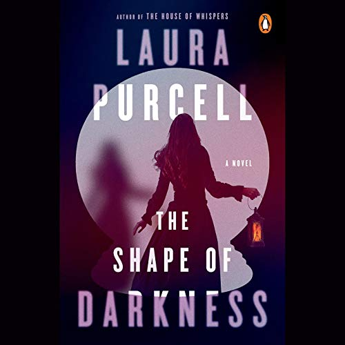 Couverture de The Shape of Darkness