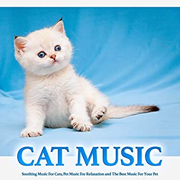 Cat Music: Soothing Music For Cats, Pet Music For Relaxation and The Best Music For Your Pet
