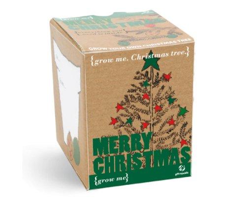 Cesto Natalizio(Coltivami albero di Natale)