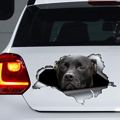 tian huan88 Car Decal Bumper Sticker, Black Pitbull Car Decal, Black Pitbull Car Sticker, Dog Decal, 15 cm