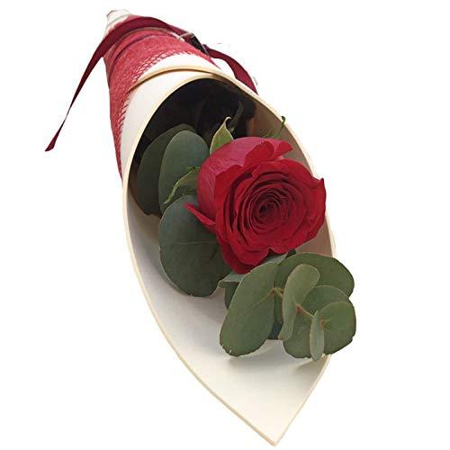 Botanic Dessign-Rosa Roja natural ENTREGA 24H DE LUNES A VIERNES Elegante diseño de rosa natural de flores frescas para ramo de flores