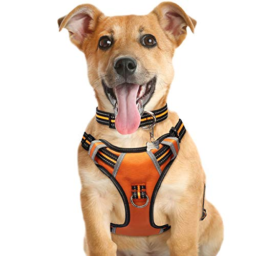 Training Harness for Dogs That Pull