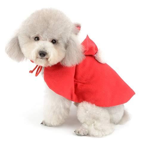 Ropa Para Perros Pequeños Tendencia Canina 2019