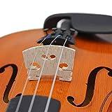 Immagine 1 violin bridge 5pcs acero in