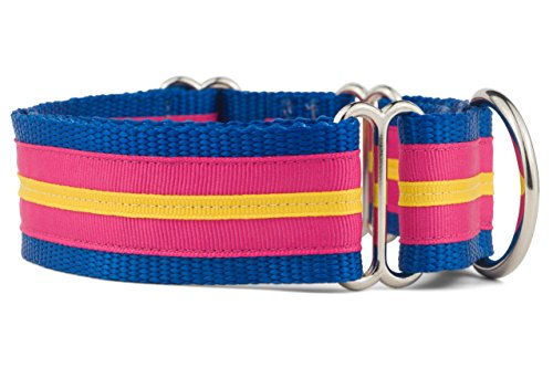 Best Dog Shocking Collars