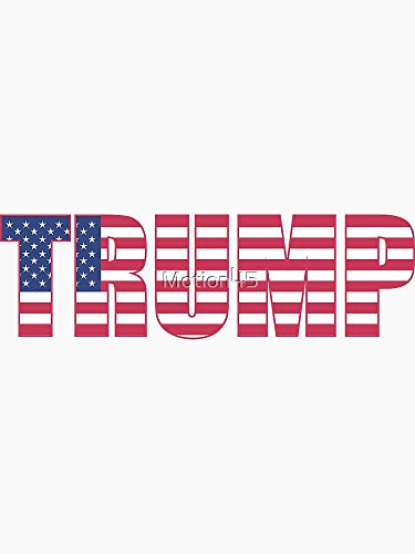 Build The Wall Trump - Sticker Graphic -Stickers for Hydroflask Water Bottles Laptop Computer Skateboard, Waterproof Decal Stickers