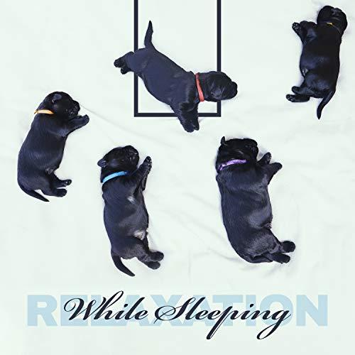 Puppy Sleep New Age Music