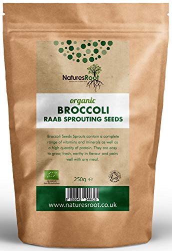 Nature Root Bio Brokkoli Sprießen Samen - Superfood | Nicht GVO | Microgreen Sprossen (500g)