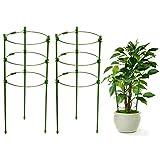 2PCS Supporto per piante con 3 anelli regolabili, Sturdy Garden Supporto per Piante paletti Gabbia per Piante di pomodori Piante, Acciaio con Rivestimento in plastica,per Piante Rampicanti,Verde 45 cm