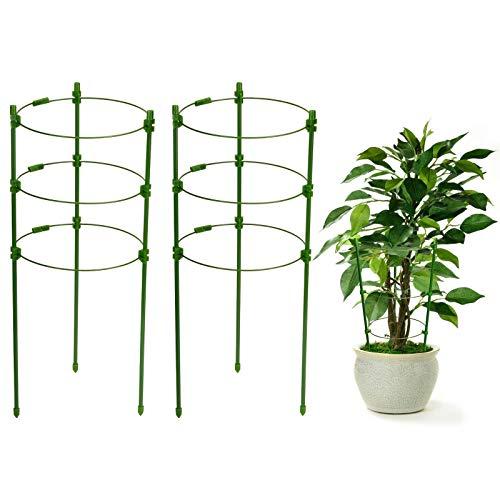 KATELUO 2 Stück 45 cm Gartenpflanzenstütze, Metall Halbrunde Garten Pflanzenhalter, für kleine Kletterpflanzen, Gemüse, Blumen und Obst, Edelstahl-Unterstützung für Garten- und Zimmerpflanzen