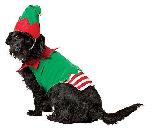 Rasta Imposta Elf Costume pour chien, taille M par silvertop Associates dBA Rasta Imposta