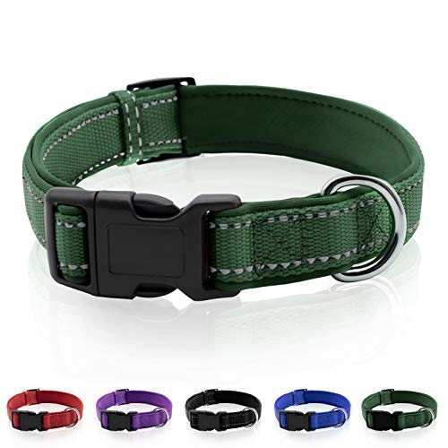 Rebnihc Reflective Dog Collar with Soft Neoprene Padded, Adjustable Nylon Dog Collar for Small Dogs, Green, XS(3/8'' Wide, Neck 10''-14'')