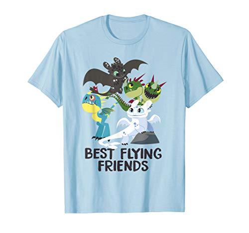 Drachenzähmen Leicht Gemacht 3 beste Freunde Hemd