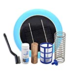 SUNTOUCH TREASURES Solar Pool Maid Ionizer - Floating Water Cleaner and Purifier Keeps Water Clear, Chlorine Free and Eco-Friendly, Compatible with Fresh and Salt Water Pools & Spas