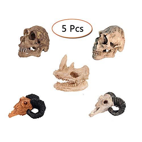 LUCKFY Fish Tank Decorativo Acuario Decoración Mini Rhino Humana y Cabra cráneo Skelecton Cabeza del Hueso del cráneo de la Resina Ornamento, Conjunto de 5