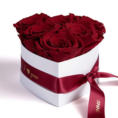 ROSEMARIE SCHULZ Heidelberg Infinity Rosenbox in Herzform konservierte Rosen Geschenk für Frauen (I Love You, Burgundy)