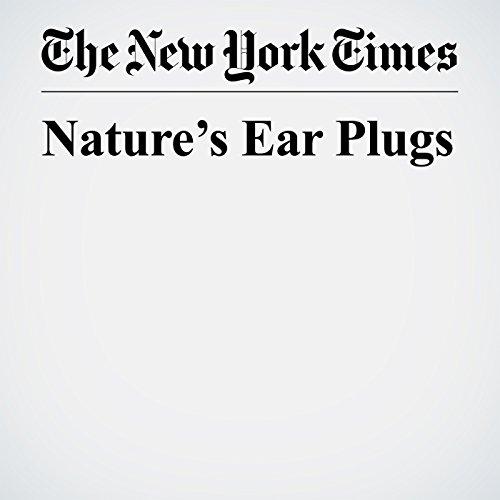 Nature's Ear Plugs copertina
