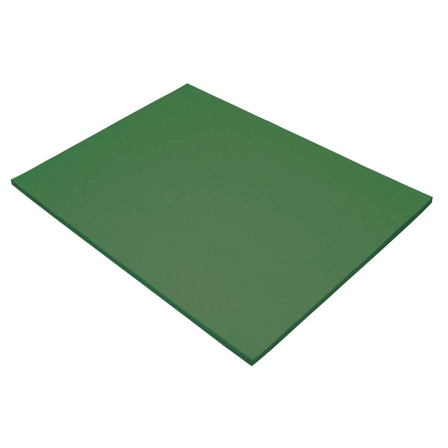 Pacon 103085 Tru-Ray Construction Paper, 18in. x 24in, Dark Green
