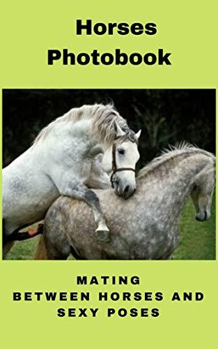 Horses Photobook : mating between horses and sexy poses (English Edition)