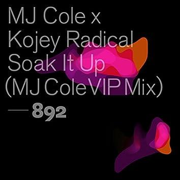 Soak It Up (MJ Cole VIP Mix)