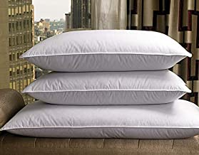 Sheraton Hotel King Feather & Down Pillow