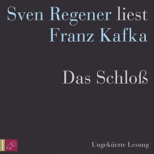 Das Schloß audiobook cover art