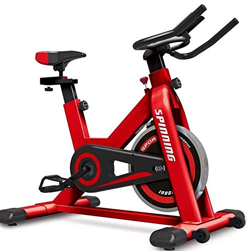 RR-YRF Unisex Bicicleta Estática De Ejercicio, Bicicletas De Spinning, Bicicletas Estáticas, Bicicletas De Ejercicio Aeróbico, Aparatos De Gimnasia, Bicicletas Estáticas Gimnasio