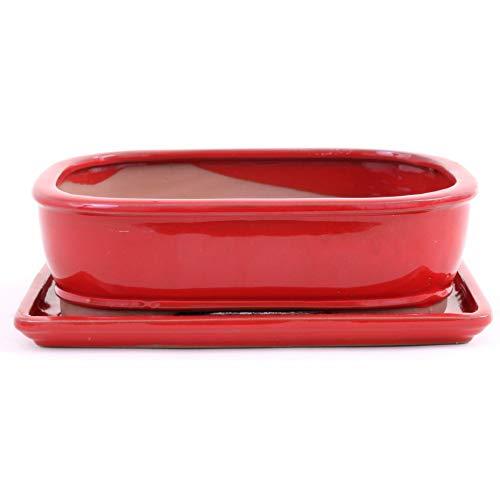 Bonsai - Schale eckig 26 x 20 x 8 cm, rot, mit Untersetzer 31105