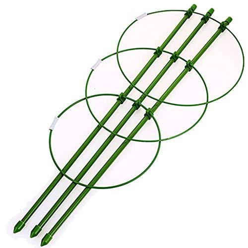MuSheng(TM) 3X Cage à tomates Tuteur Plantes grimpantes, Support à 3 Anneaux, Jardin, Balcon, 45 cm Long (Vert)