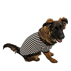 Midlee Referee Dog Halloween Costume
