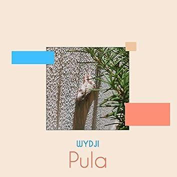 Pula (Original Mix)