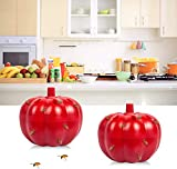 2 Pack Fruit Fly Traps, Gnat Trap Indoor for Home/Kitchen, Gnat Killer for Indoor/Plants