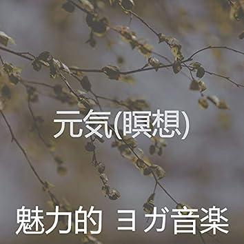 元気(瞑想)
