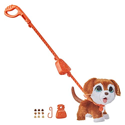 Toy Dog on a Leash