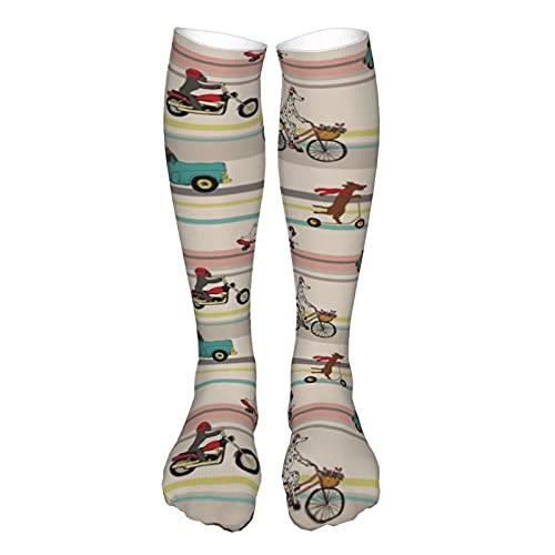 Calcetines de compresión para mujer y hombre, divertidos perros para conducir coche, bicicleta de equitación, scooter, mejor apoyo para correr, deportes, senderismo, viajes en vuelo, circulación