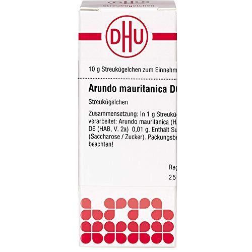 DHU Arundo mauritanica D6 Streukügelchen, 10 g Globuli