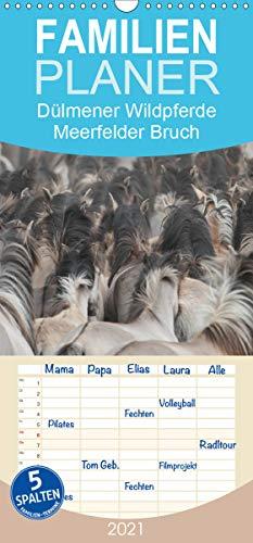 Dülmener Wildpferde - Meerfelder Bruch - Familienplaner hoch (Wandkalender 2021 , 21 cm x 45 cm, hoch): Wildpferde vom Merfelder Bruch (Monatskalender, 14 Seiten ) (CALVENDO Tiere)