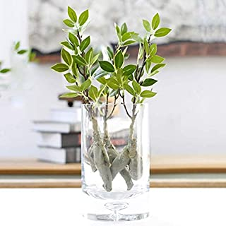 Mccng - Artificial & Dried Flowers - Artificial Plastic Banyan Tree Branch With Fat Root Green Leaves Decoration Bonsai Fake Flowers - Flowers Dried Artificial