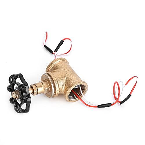 Eulbevoli Interruptor de luz, Estilo Retro Interruptor de luz Steampunk fácil de Limpiar para Luces de Tubo u Otra iluminación Adecuada para Tales interruptores