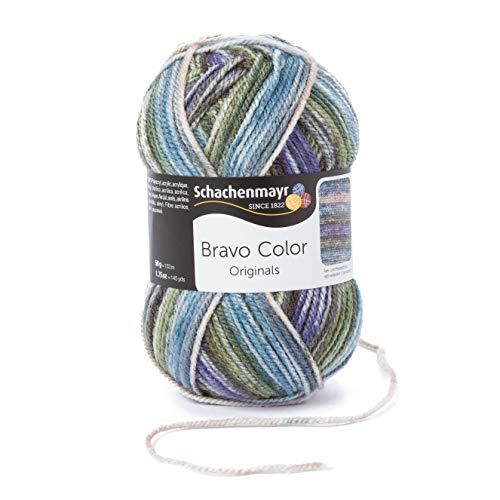 Schachenmayr Handstrickgarne Bravo Color, 50g Moor
