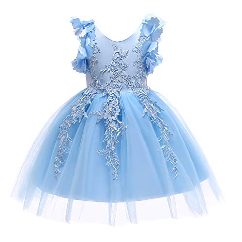Weileenice Halloween 1-12T Big/Little Girl Flower Lace Christmas Dresses Fancy Princess Pageant Prom Kids Ball Gown Plus Birthday Tulle Dress for Communion Party Wedding (HDX-BE, 4-5 Years) Blue