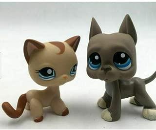 Littlest Pet Shop LPS Toy Lps#1024 Girl Gift Caramel Swirl Shorthair Cat Kitty