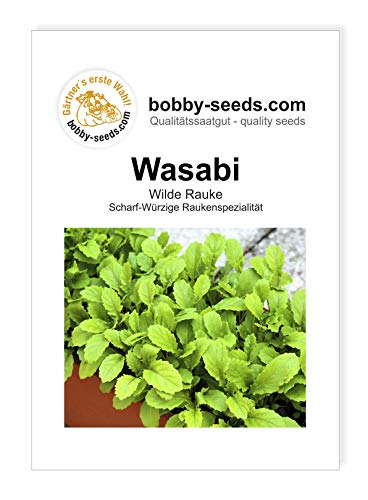 Bobby-Seeds Salatsamen Wasabi Wildrauke Portion