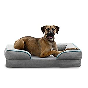 BrindleOrthopedic Memory FoamPet Bedwith Wrap Around Bolster– Plush Dog and Cat Bed–Removable VelvetCover, Large, Dove Grey