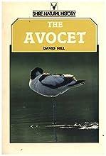 The Avocet